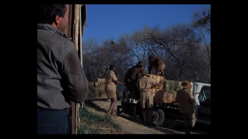 Дактари / Daktari. (США) (1966) (1 сезон ,10 серия)