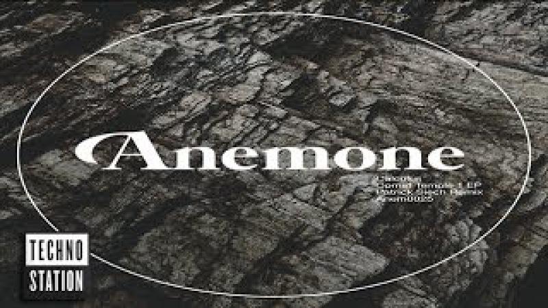 Calculus Comet Temple 1 Patrick Siech Remix Anemone Recordings