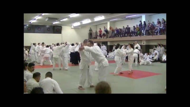 Yukimitsu Kobayashi Shihan-Romania-2016-part 2