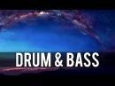 Misael Gauna Bloom Ascend Starlight Diversity Release