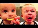 Видео для детей. ПРИКОЛЫ С ДЕТЬМИ 2017 Смешные дети