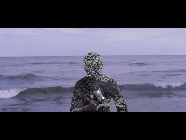 Tamten - Diamentowa Sutra (video album)