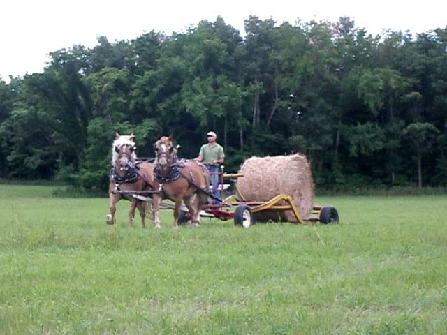 Horse Drawn Round Bale Mover