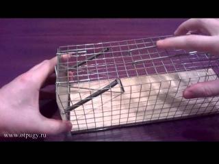 Живоловки.  Крысоловка-клетка