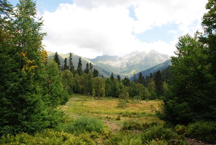 Абхазия – несколько советов туристам