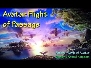 Avatar Flight of Passage On Ride POV with Queue Walt Disney World Pandora