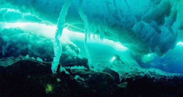 Подводный смерч или «Сосулька смерти» в Арктике