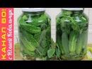 Хрустящие Консервированные Огурцы со Щирицей Амарант на Зиму Pickled Cucumbers with Amaranth