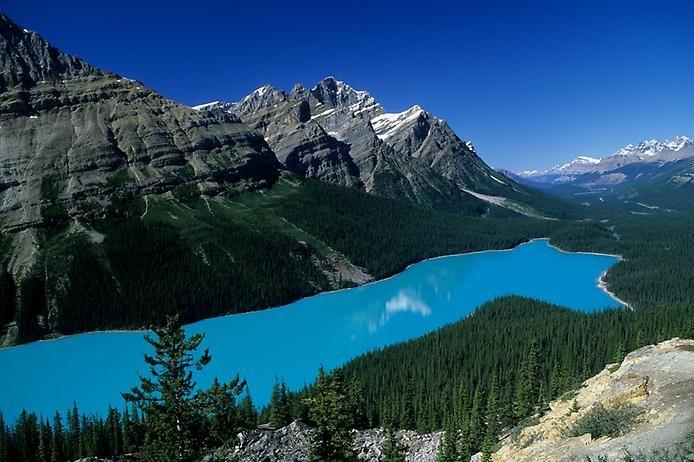 Озеро Пейто в Скалистых горах, изображение №4