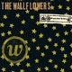 The Wallflowers - Laughing Out Loud