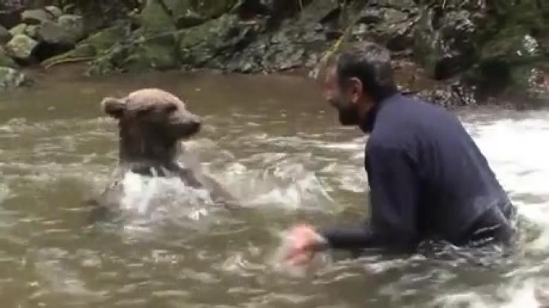 Водные игры с медвежонком
