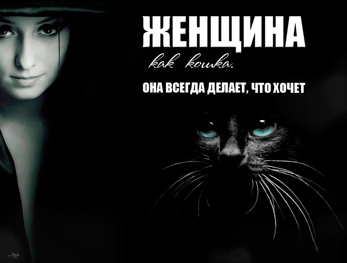 Женщина как кошка картинка
