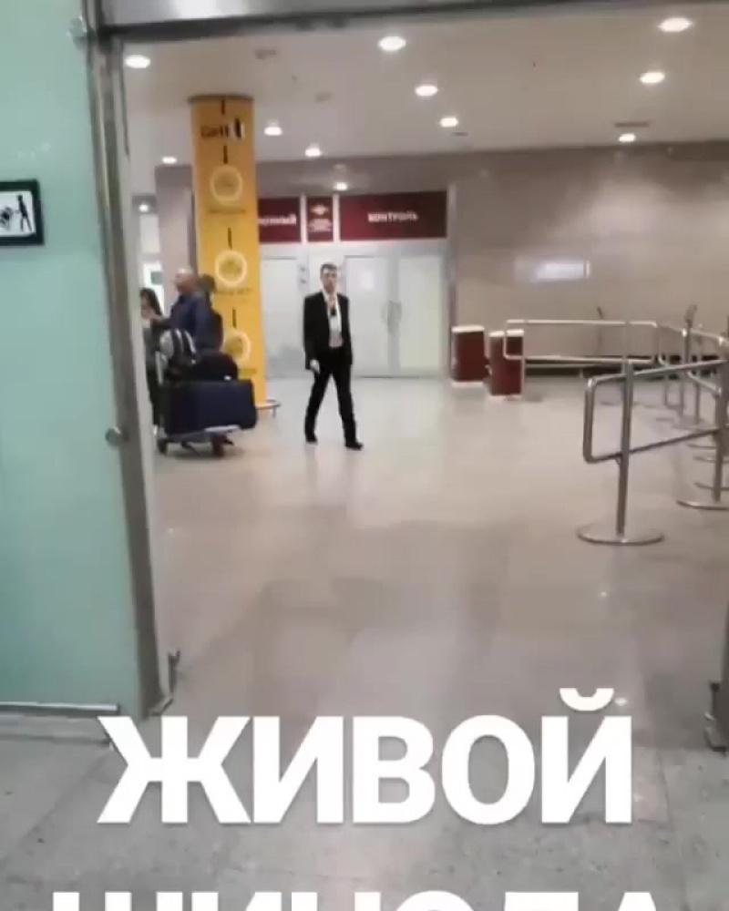 Встреча Майка Шиноды в Пулково, СПб, 30.08.2018