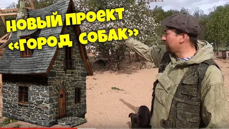 Новый проект ГОРОД СОБАК Приют для животных ВЕРНОСТЬ г Смоленск