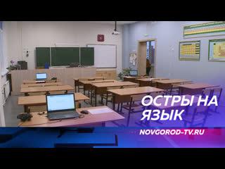 Девятиклассники новгородских школ попробовали сдать устный экзамен по английскому языку