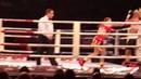 Delfine Persoon, tko, erin mc gowan, boxing fight night
