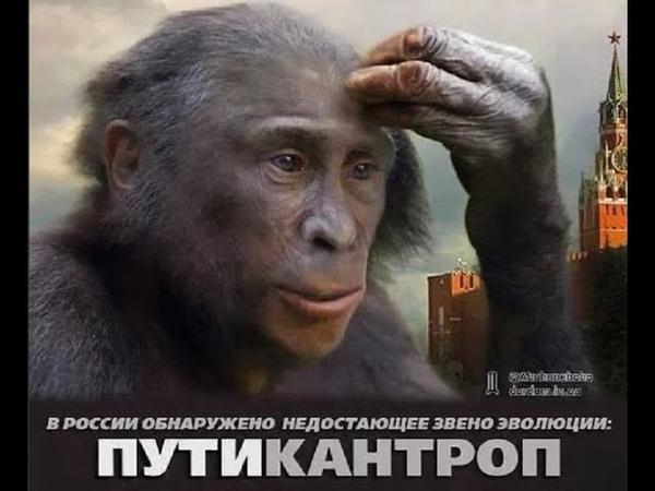 шоу голой обезьяны путин ка Александр Новиков депутат законодательного собрания Район англия Челси