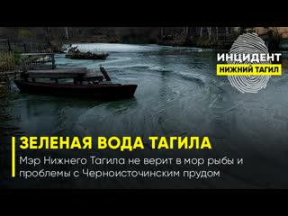 Мэр Нижнего Тагила не верит в мор рыбы и проблемы с Черноисточинским прудом