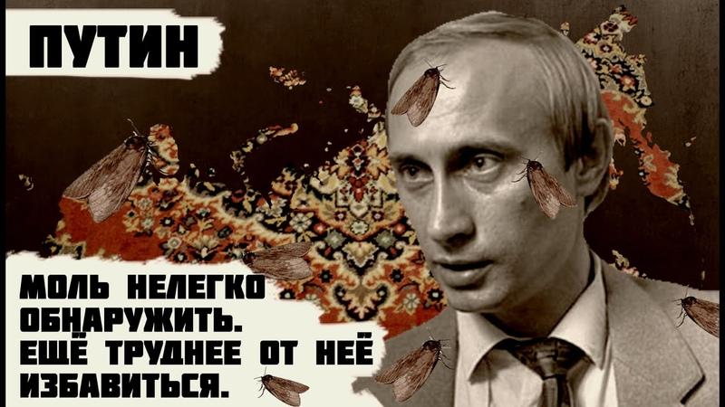 ПУТИН. Детство, склонность к садизму, и почему он пользуется поддержкой россиян.