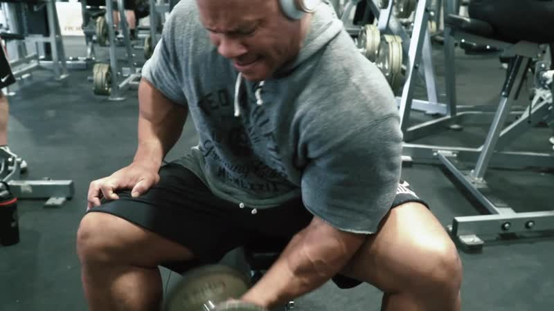 SEATED DB CONCENTRATION CURLS Level 1