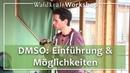 DMSO Einführung Möglichkeiten Dr rer nat Hartmut Fischer
