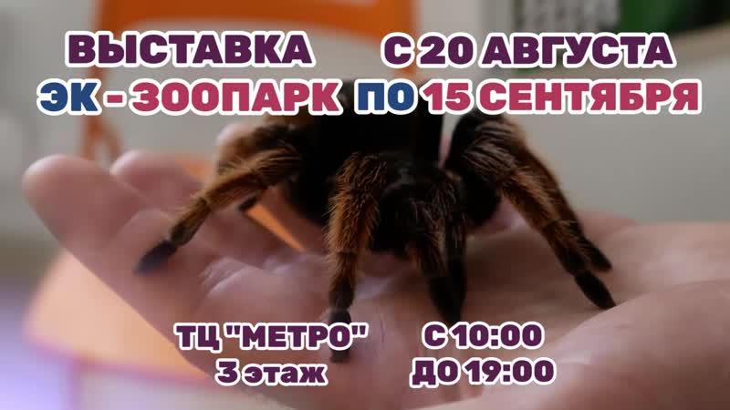 Реклама ЭК - ЗООПАРК