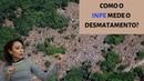 Será que o INPE mediu certo o desmatamento? 28