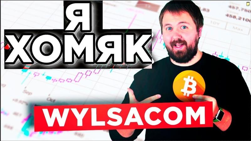 Wylsacom купил акции Apple и продал биткоины. КТО самый большой ХОМЯК? Как блогеры влияют на биткоин