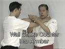 Wally Jay Small Circle Jujitsu tendon triceps armbars And armlocks