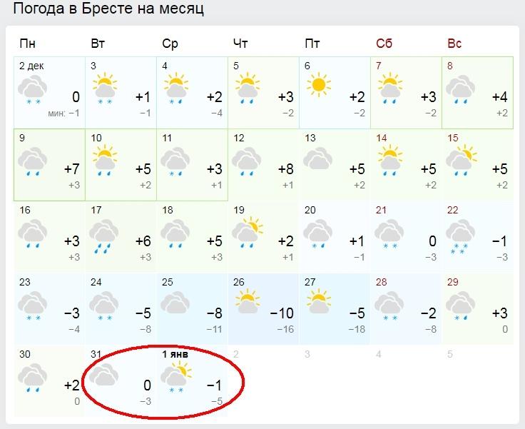 Выпадет ли снег на Новый год и ждать ли аномальных морозов? Какой будет зима в этом году