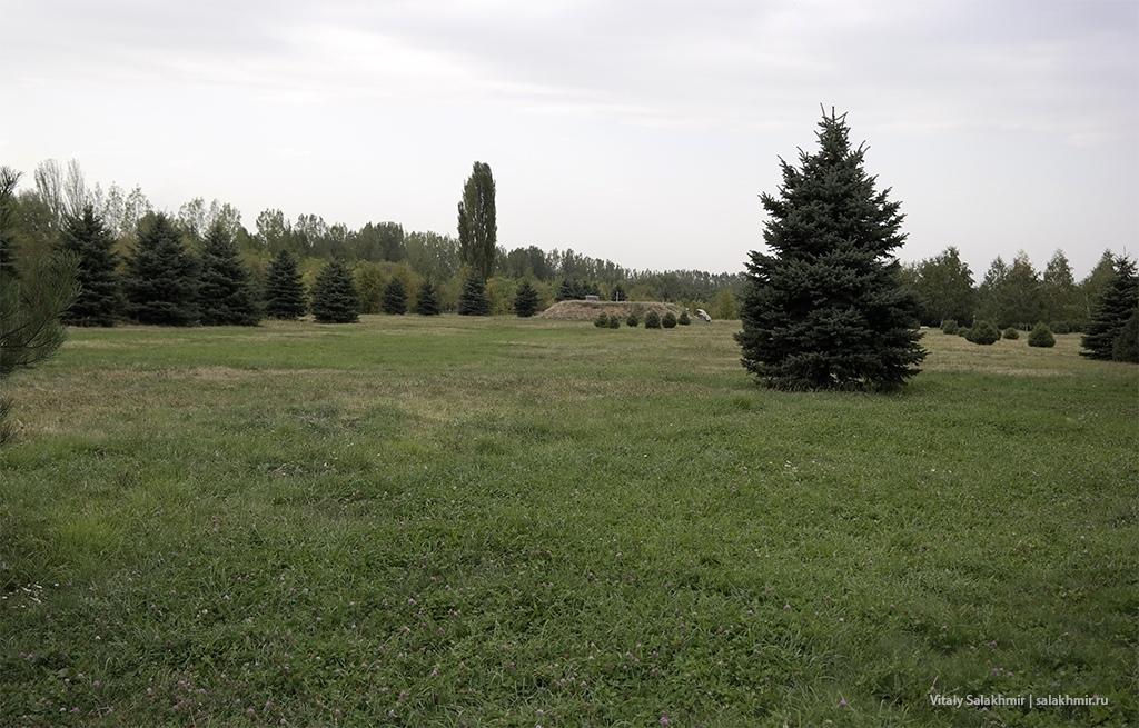 Поле с газоном, Парк Первого Президента, Алматы 2019