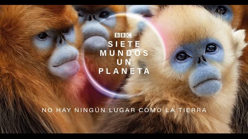 BBC Семь миров одна планета 2019 г Научно познавательный Северная Америка