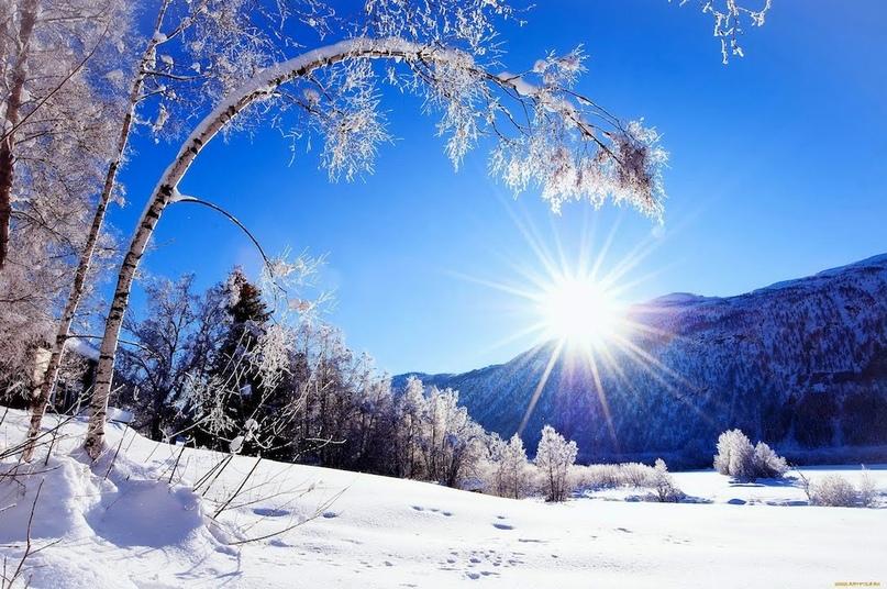 Домашнее задание по теме: «Всюду снег. В снегу дома – принесла его зима», изображение №1