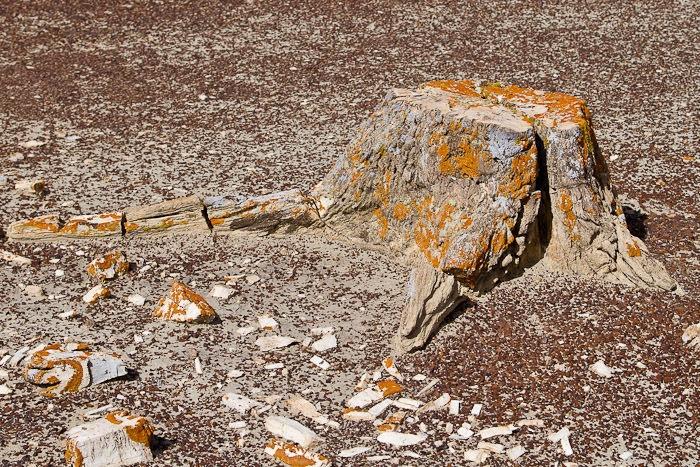 Интересные места нашей планеты страна геологических чудес Ах-Ши-Сле-Пах (Мексика), изображение №4
