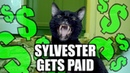 Talking Kitty Cat 68 - Sylvester Gets Paid