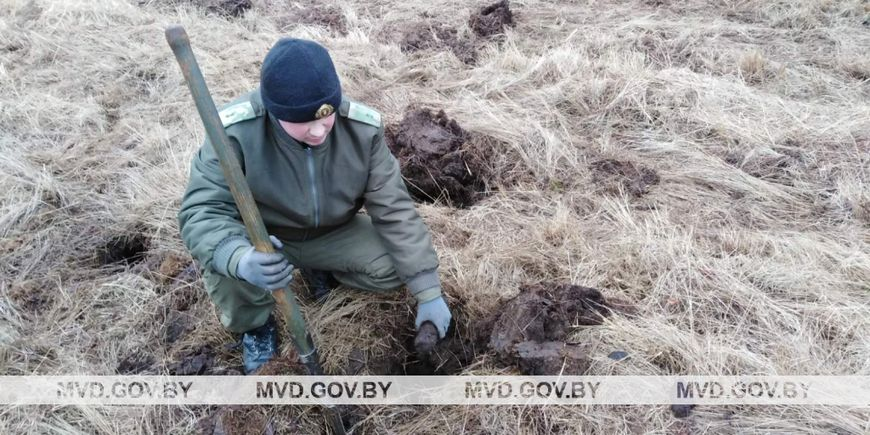Более 260 боеприпасов нашли рядом с железной дорогой в Пинском районе