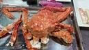 King Crab Cua Hoàng Đế NGỘP giá rẻ bất ngờ