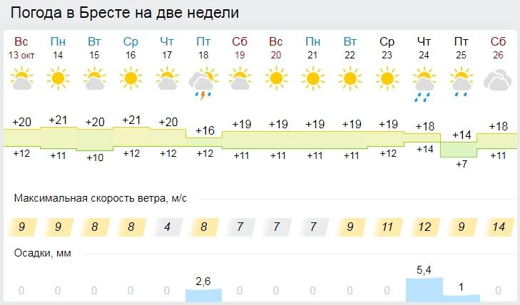 До +23°С ожидается в Беларуси 14 октября. Золотая осень в Бресте почти на две недели!