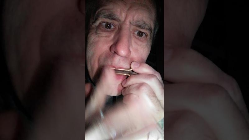 Комуз ПолноЛуние Затмение Хакасия Ефремкино