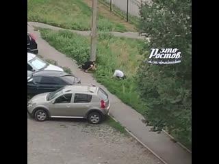 Ростовчанин распугал кладоискателей -  - Это Ростов-на-Дону!