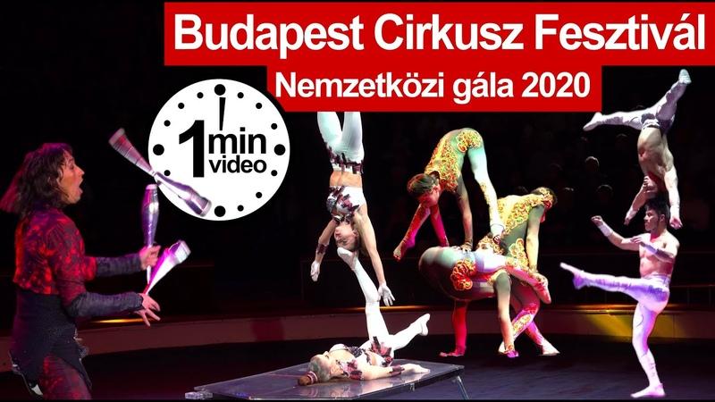 Semen Krachinov at Cirkusz Fesztivál Gála a Fővárosi Nagycirkuszban 2020