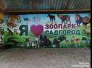 Контактный зоопарк сад город Владивосток VL путешествие Алисы