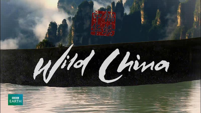 BBC: Дикий Китай 4 серия - По ту сторону стены