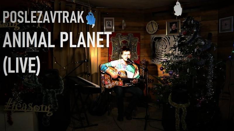 Poslezavtrak Animal Planet Live