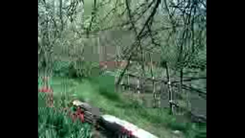 Video-f67f60627a776d5a32c7b569a4d1fde4-V.mp4