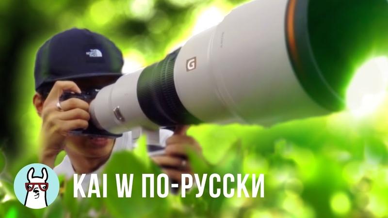 Kai W по-русски: 2 новые ПУШКИ от Sony