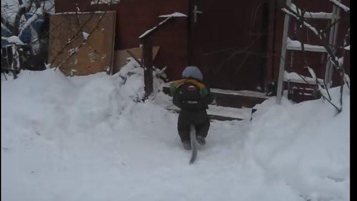 Федор на прогулке зимой идет проверять кур и коз яванская макака