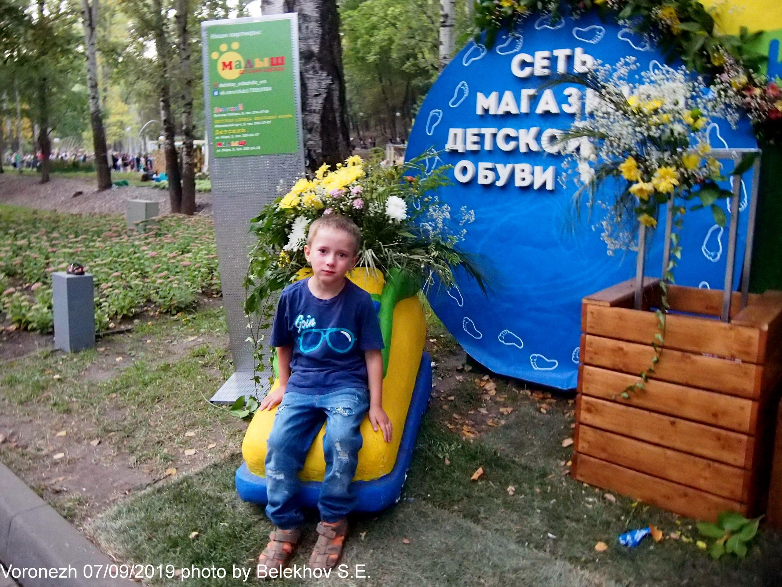 Воронеж, город-сад