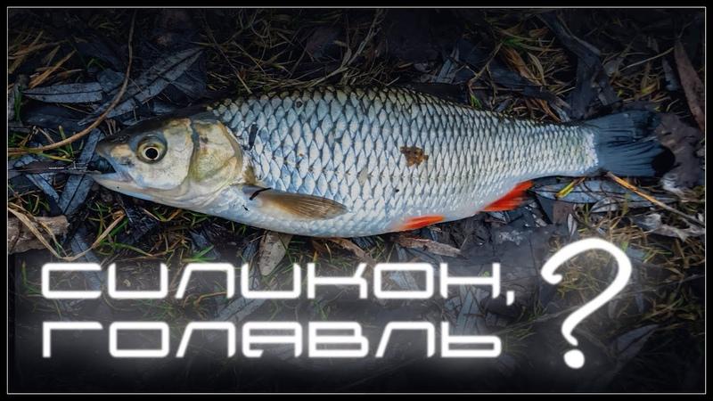Голавль на силикон | рыбалка в городе | tanta
