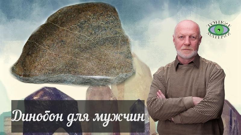 Динобон Энергетика камня Александр Гук
